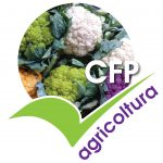 , CFP Agricoltura, COEMM, COEMM