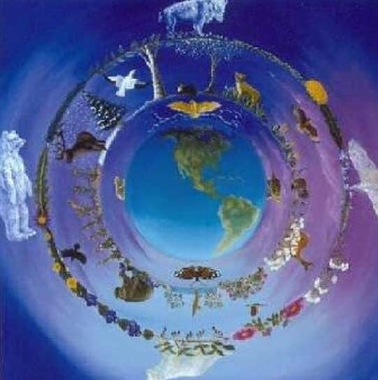 Maura Luperto – Riflessioni – C. G. Jung. (Simboli della trasformazione)