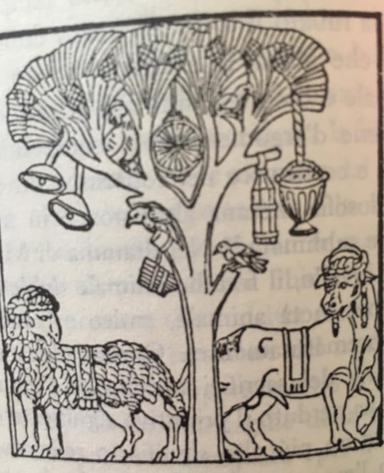 Maura Luperto – Riflessioni – Il mondo ha origine quando l'uomo lo scopre ……….. Jung.